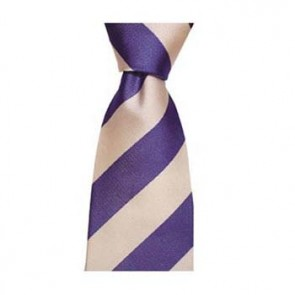 Blue And Pink Wide Stripe Tie