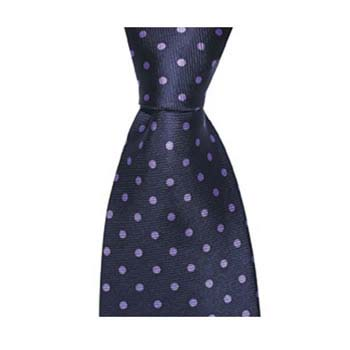 Navy Blue And Purple Small Polka Dot Tie