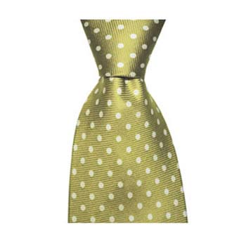 Green And Grey Small Polka Dot Tie