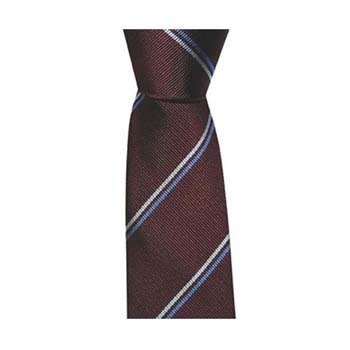 Burgundy And Blue Thin Striped Tie