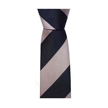 Navy Blue And Pink Thick Stripe Tie