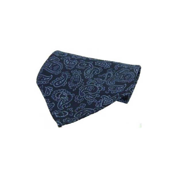 Blue with Medium Paisley Pattern Silk Pocket Square