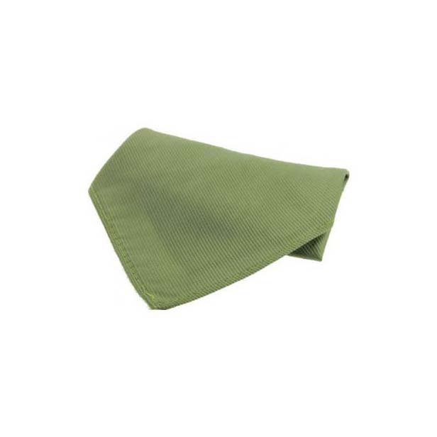 Country Green Diagonal Twill Silk Pocket Square