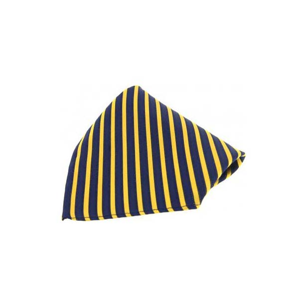 Gold and Navy Striped Silk Pocket Square