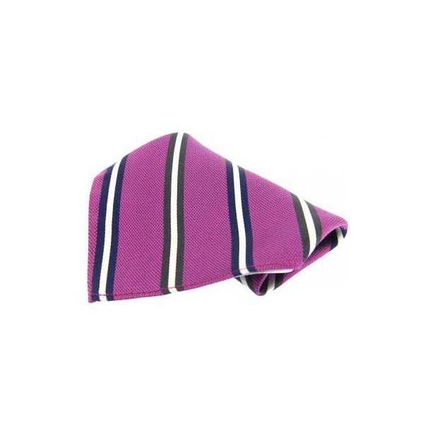 Purple with Multi Coloured Stripes Silk Pocket Square