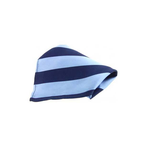 Sky Blue and Navy Stripes Silk Pocket Square