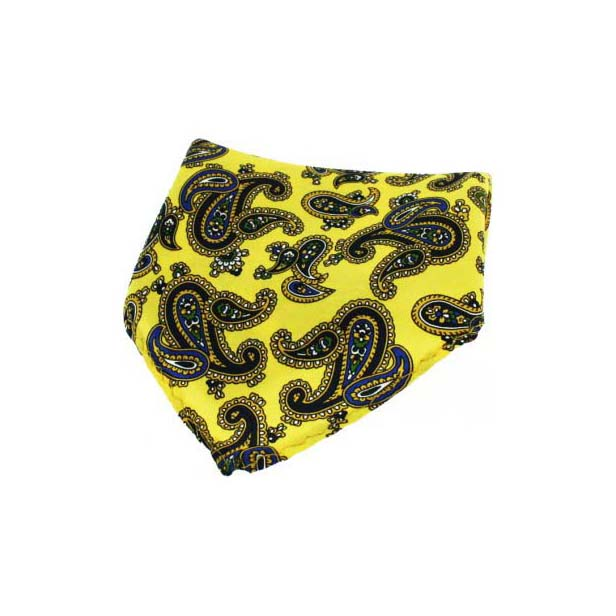 Gold with Large Paisley Silk Pocket Square