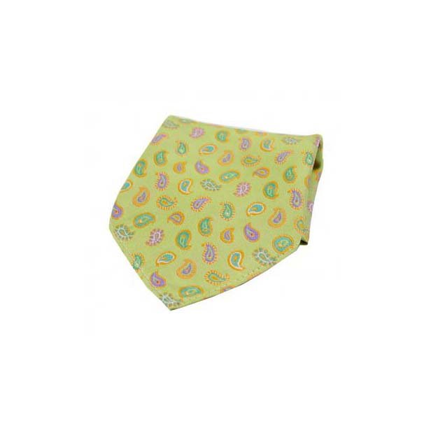 Multi Coloured Teardrop Paisley on Lime Green Silk Pocket Square