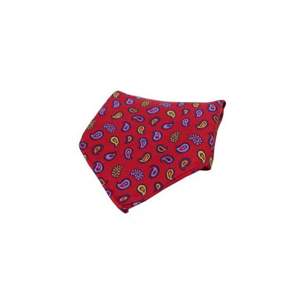 Multi Coloured Teardrop Paisley on Red Silk Pocket Square
