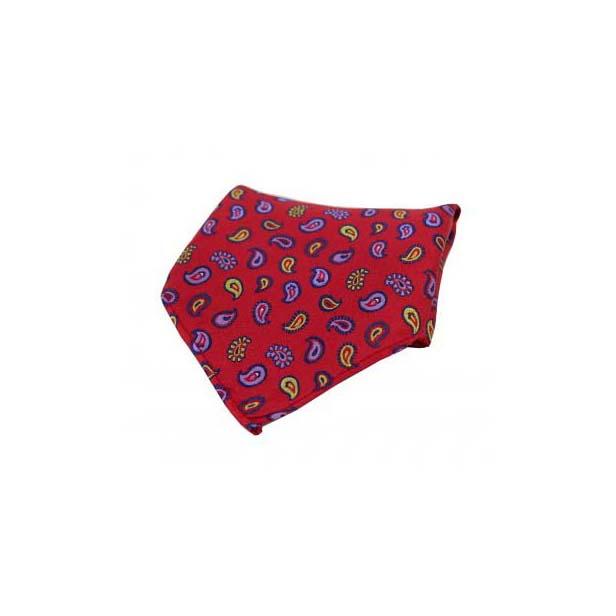 Multi Coloured Teardrop Paisley on Red Silk Pocket Square