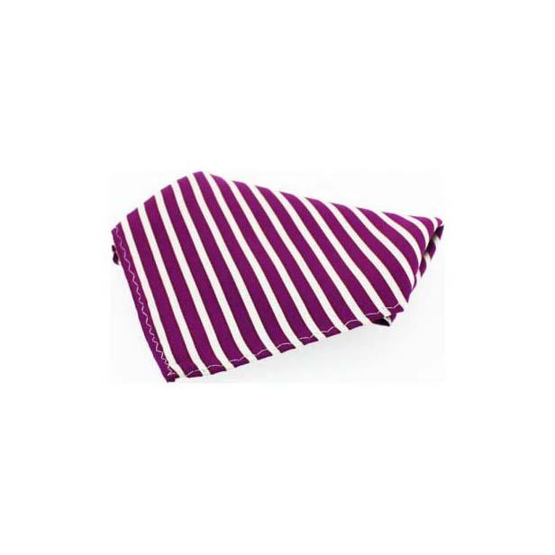Plumb Striped Silk Pocket Square