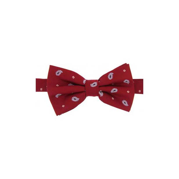 Red Teardrop Feather Paisley Print Woven Silk Bow Tie