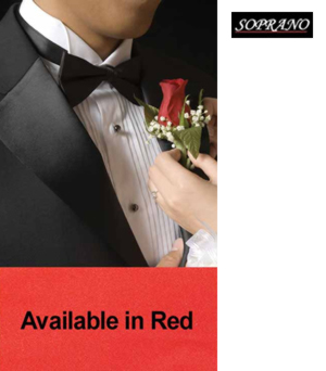 Red Pre Tied Poly Bow Tie