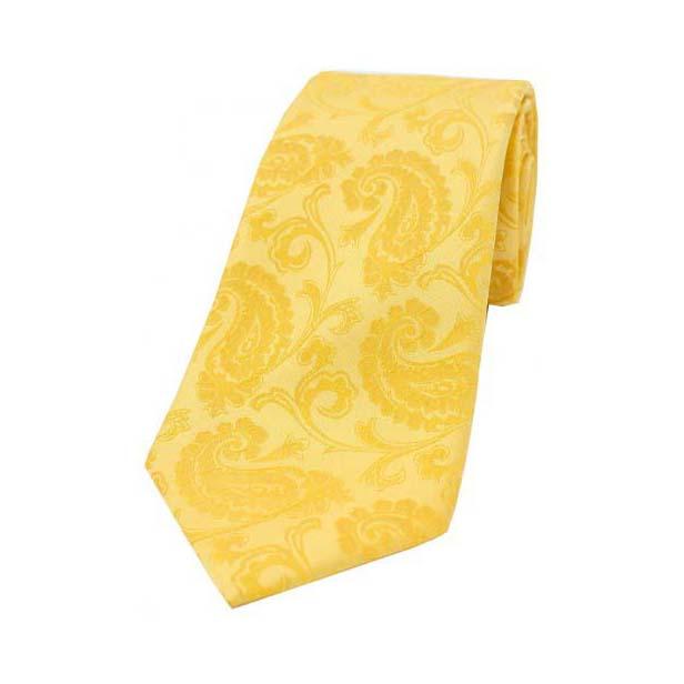 Gold Paisley Woven Silk Tie