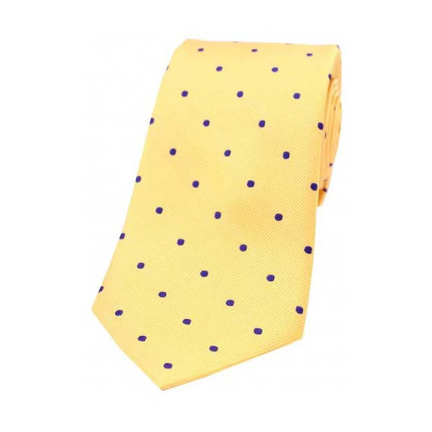 Gold and Blue Polka Dot Silk Tie