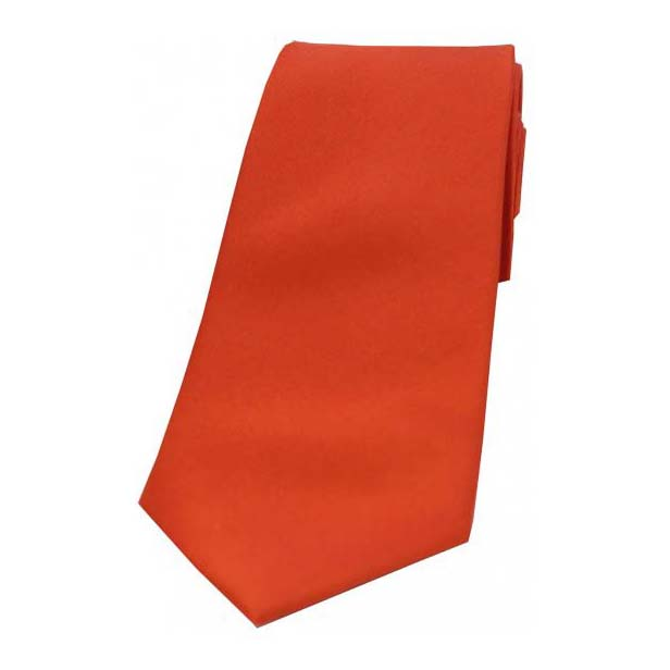 Burnt Orange Satin Silk Tie